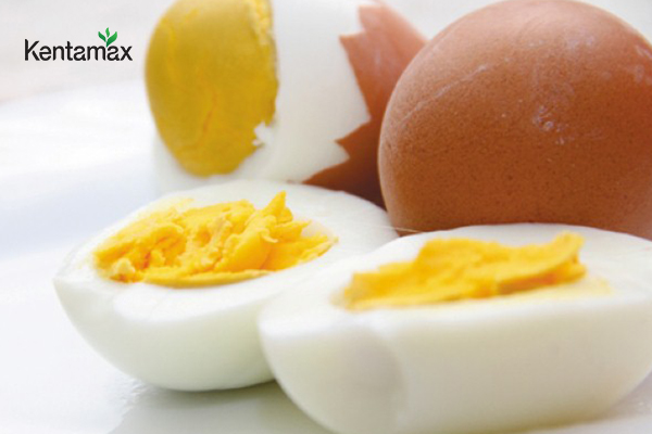 Các loại trứng