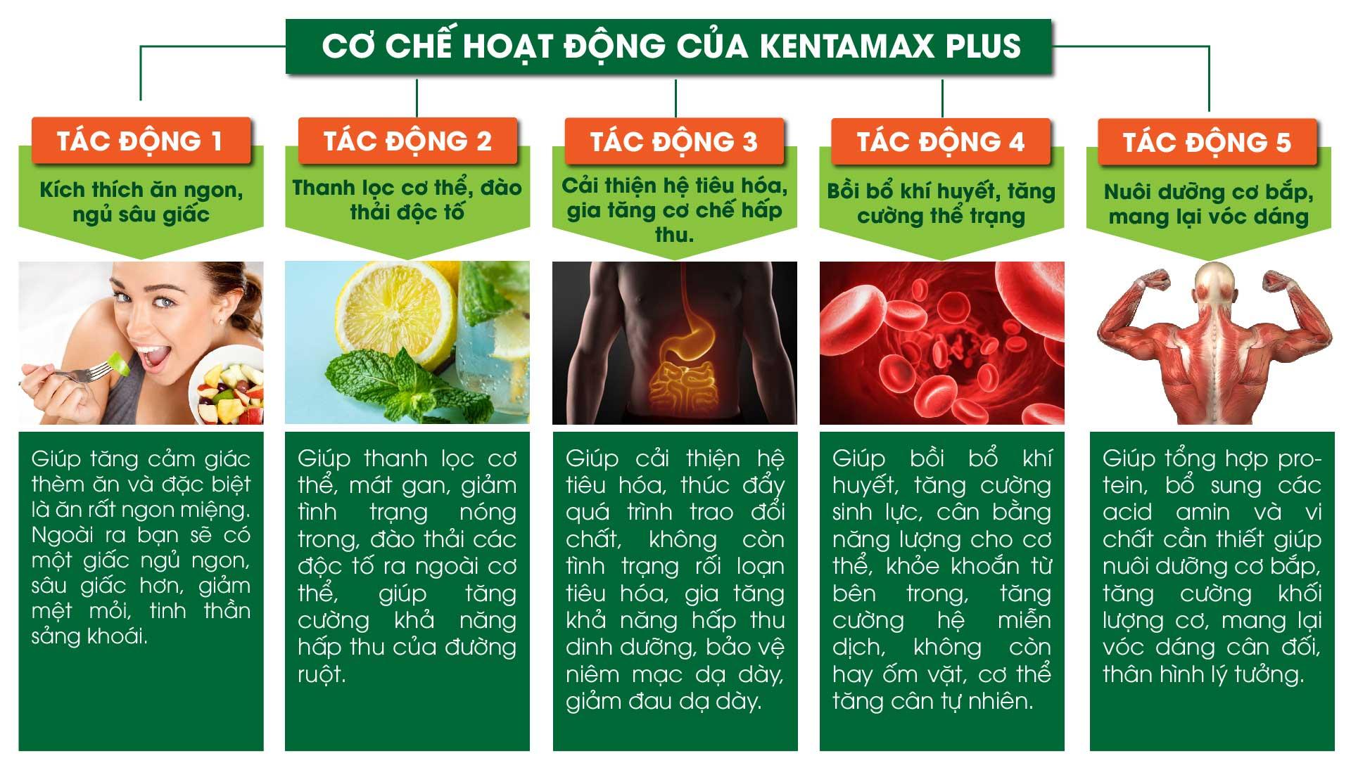 co-che-tac-dong-vien-uong-kentamax-plus