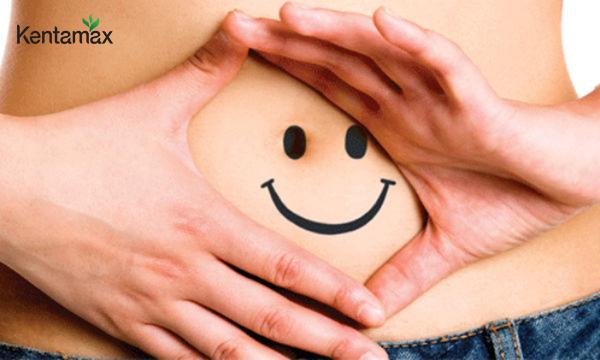 Cải thiện hệ tiêu hóa và gia tăng sự hấp thụ