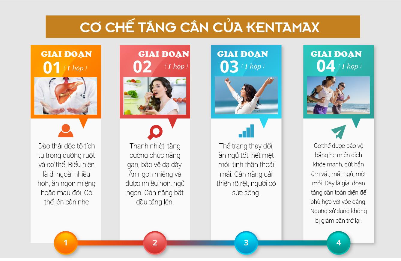 4 giai đoạn tác động của Kentamax