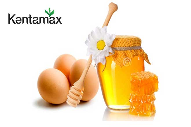 Mật ong vừa tốt cho sức khỏe, vừa giúp người gầy béo lên