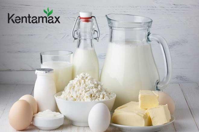 Sữa là nguồn dinh dưỡng dồi dào giúp bạn tăng cân