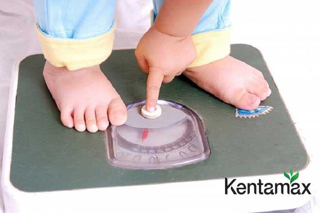 Mẹo tăng cân cho trẻ hiệu quả nhanh chóng