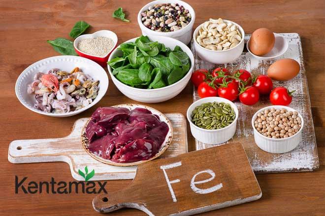 Bổ sung thực phẩm chứa sắt sau khi hiến máu để phục hồi và tăng cân