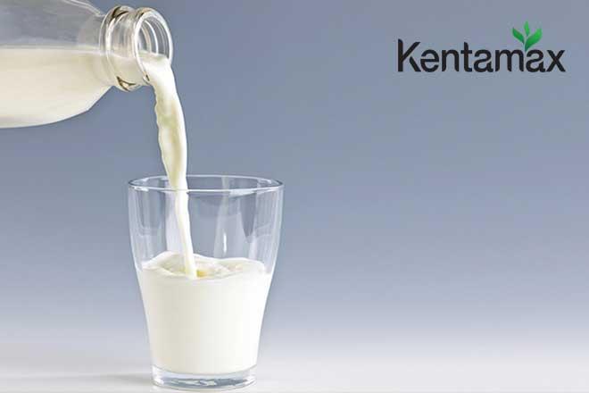 Uống sữa sau hiến máu giúp bạn bổ sung nguồn protein dồi dào