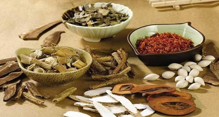 Thuốc đông y tăng cân từ thảo dược thiên nhiên